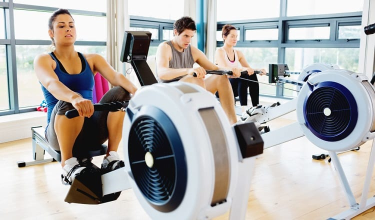 Group Of People On Rowing Machines